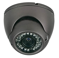 Nexhi™ NXS-412DV6B-CAM Camean 420TVL 1/3 SONY HAD CCD Color Vandal Dome Camera