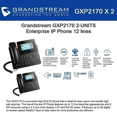 Grandstream GXP2170 Bundle of 2-packs 12-Lines color Display IP Phone
